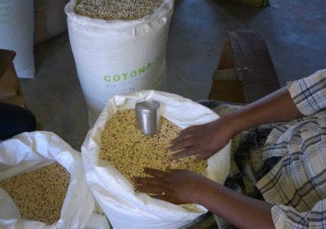 Żywność dla ofiar cyklonu na Madagaskarze