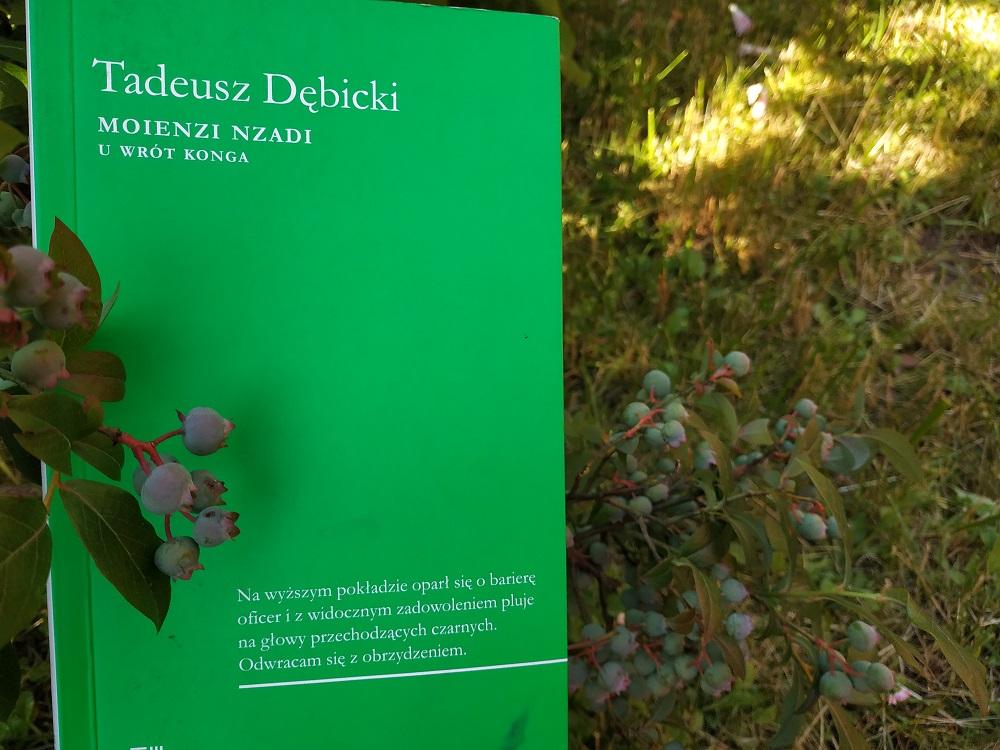 Tadeusz Dębicki, Moienzi Nzandi, U wrót Konga