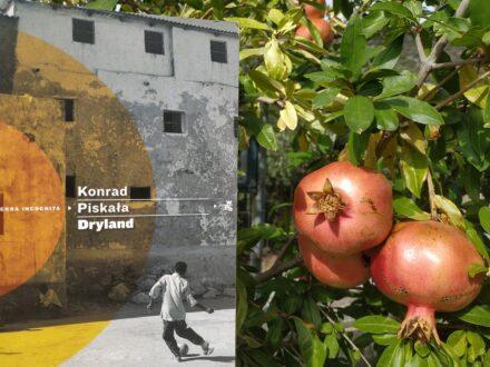 konrad_piskala_dryland